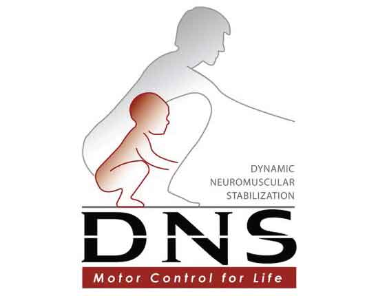 Dynamic Neuromuscular Stabilisation Logo